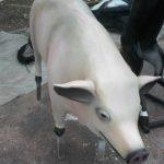 Çiftlik Domuzu Figürü