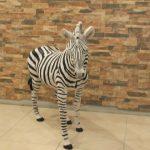 Afrika Zebrası Figürü