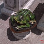 Art Kurbağa Maketi