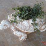 Büyük Kaplumbağa Çiçeklik Maketi