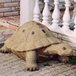 Büyük Kaplumbağa Heykeli