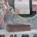 Güvercin Maketi