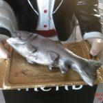 Küçük Balık Maketi