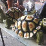 Küçük Kaplumbağa Heykel