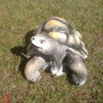 Küçük Kaplumbağa Maketi