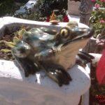 Küçük Kurbağa Maketi