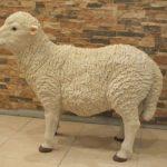 Kıbrıs Büyük Koyun Maketi