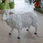 Kıbrıs Küçük Koyun Maketi