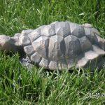 Kaplumbağa Çiçeklik Maketi