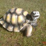 Kaplumbağa Maketi