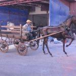 Koşumlu Kır At Figürü