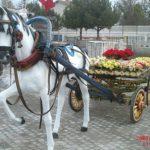Koşumlu Kır At Heykeli