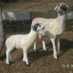 Koyun Figürü