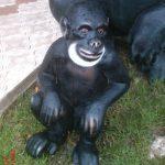 Maymun Maketi