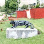 Puma Maketi