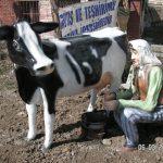 Süt Sağan Kadın Maketi