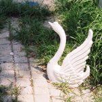 Uçan Kuğu Maketi