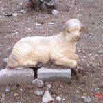 Yatan Mini Koyun Maketi