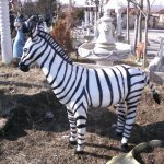 Zebra Maketi