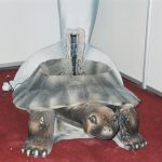 Kaplumbağa Süs Havuzu