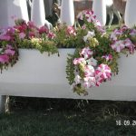 Sümbül Çiçeklik